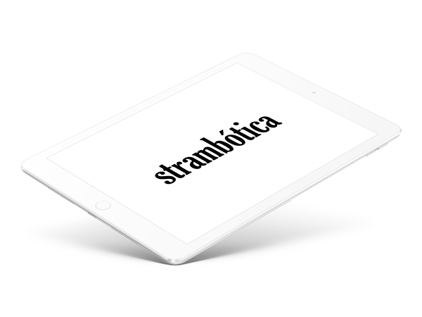 diseño tienda online strambótica